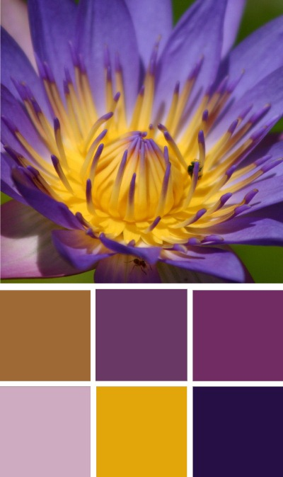 Gallery for gold and purple color palette - Gold and silver color scheme ...