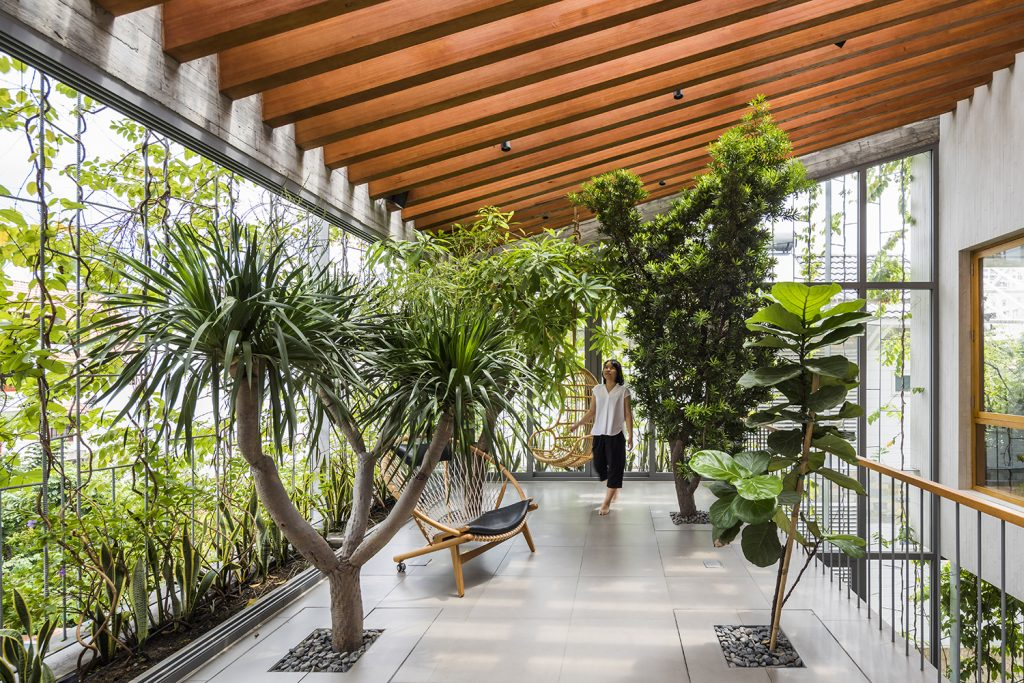 Biophilic design with natural wood and indoor plants